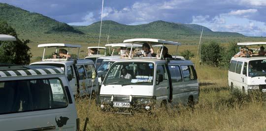 Stau in der Massai Mara